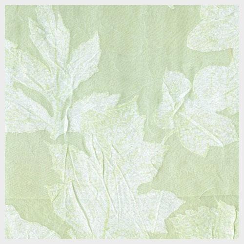 Honeydew Leaf Voile with Celadon Peau D'Soie