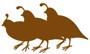 quail-lodge-logo web xs.jpg