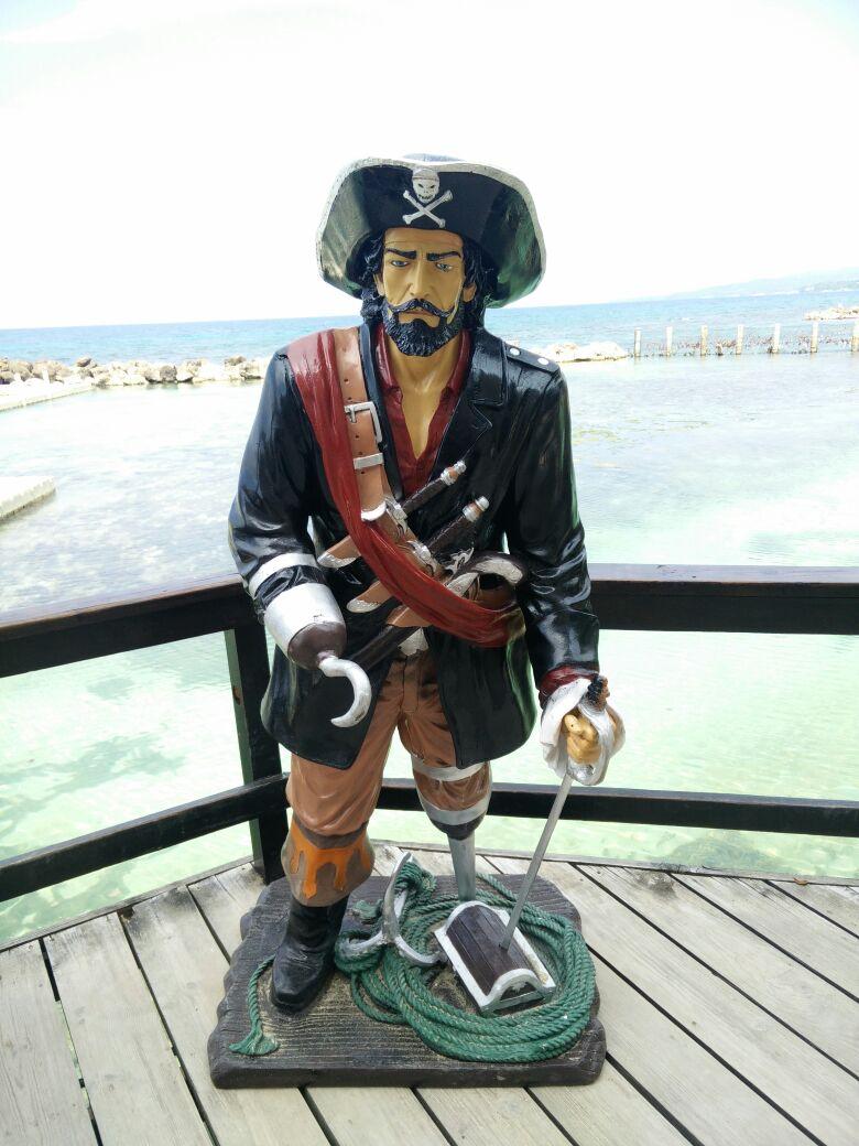 Dolphin Cove Pirate 1