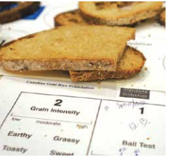 All sensory experiences are valid—there is no right or wrong observation. Attendees record their experiences as they sample each bread.