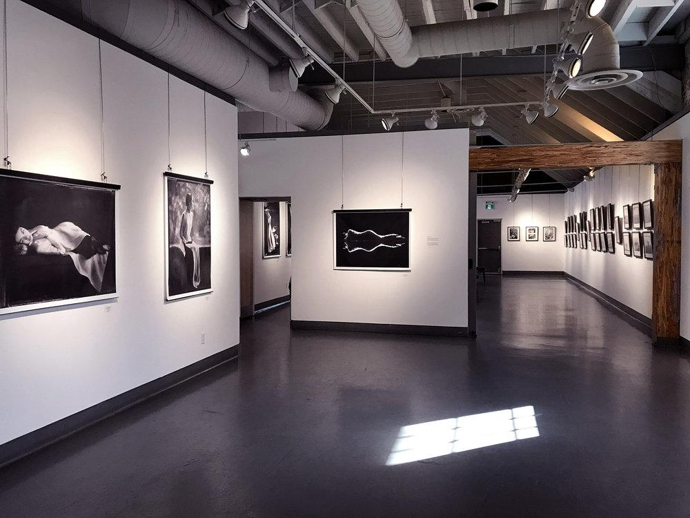 ao trang exhibit 2017 2.jpg
