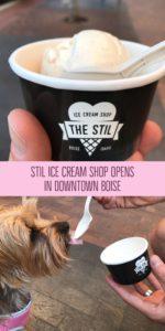 STIL-Ice-Cream-Shop-150x300.jpg