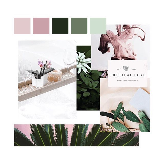 Happy #moodboardmonday! This one was a first round moodboard concept for a pretty awesome skincare company that I'm working with, and while we ultimately ended up going in a much different direction, I am still loving this peaceful, natural, but still fun and full-of-personality vibe! . . #smallbizlife #branddesign #moodboard #branding #graphicdesign #creativestudio #mycreativebiz #onlinebusiness #solopreneur #savvybusinessowner #creativepreneur #creativeentrepreneur #communityovercompetition #tnchustler #risingtidesociety #creativelifehappylife #calledtobecreative #successcoach #businesscoach #photographer #etsyseller #femaleentrepreneur #makersmovement #sidehustle #coachesofinstagram #photographersofinstagram