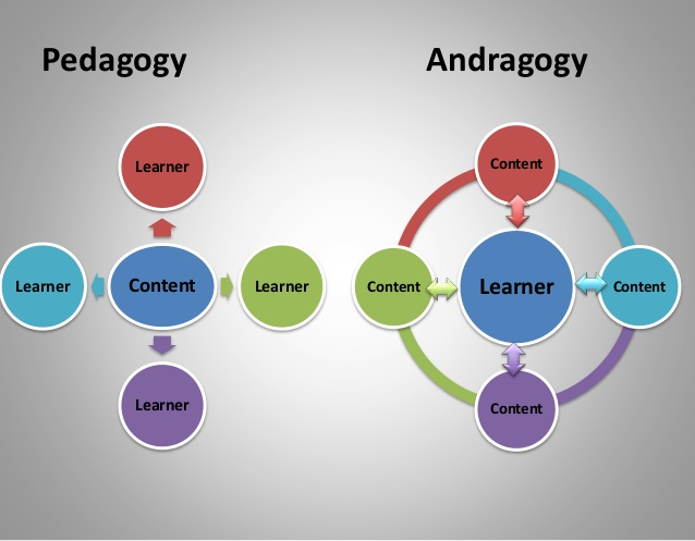 Figure 1. Pedagogy vs Andragogy