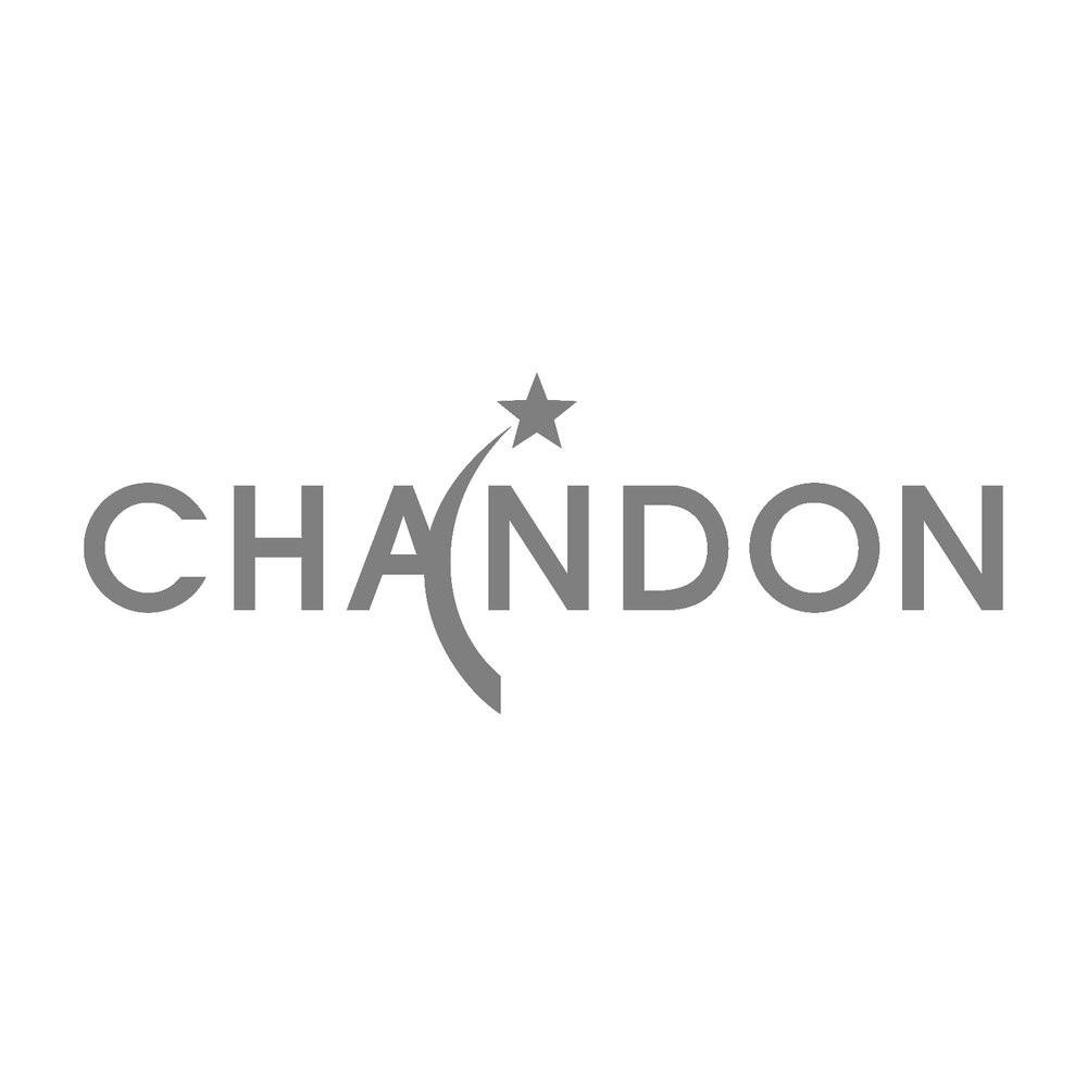 chandon-corporate-magician-agusitn-tash.jpg