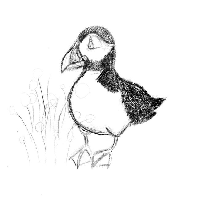 Little doodles 🐧🌷🌻 This is just a random page from my sketchbook and a potential idea I have for a new puffin design perhaps! We'll see 😋 . . . . . . . . . . . . .  #beaumaris #anglesey #photooftheday #instagood #creativepreneur #angleseygram #findyourepic #doitfortheprocess #instaart #puffinprints #illustration #apinchofprocess #littlethings #puffin #angleseyart #puffinart #puffinillustration #atlanticpuffin #northwalesart #welshartist #welshart #floralart #puffinpals #artdiscover #artcollective #art_we_inspire #doodlesofinsta #doodles #doodlesofinstagram #doodle