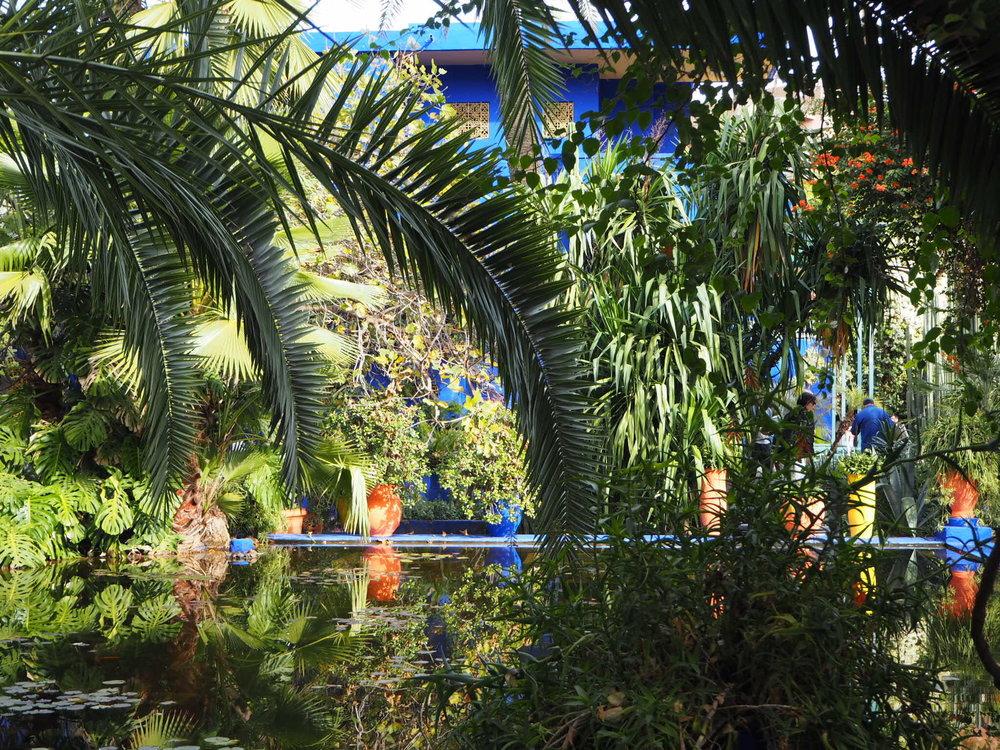 jardin Majorelle with a peek of the famous Majorelle blue