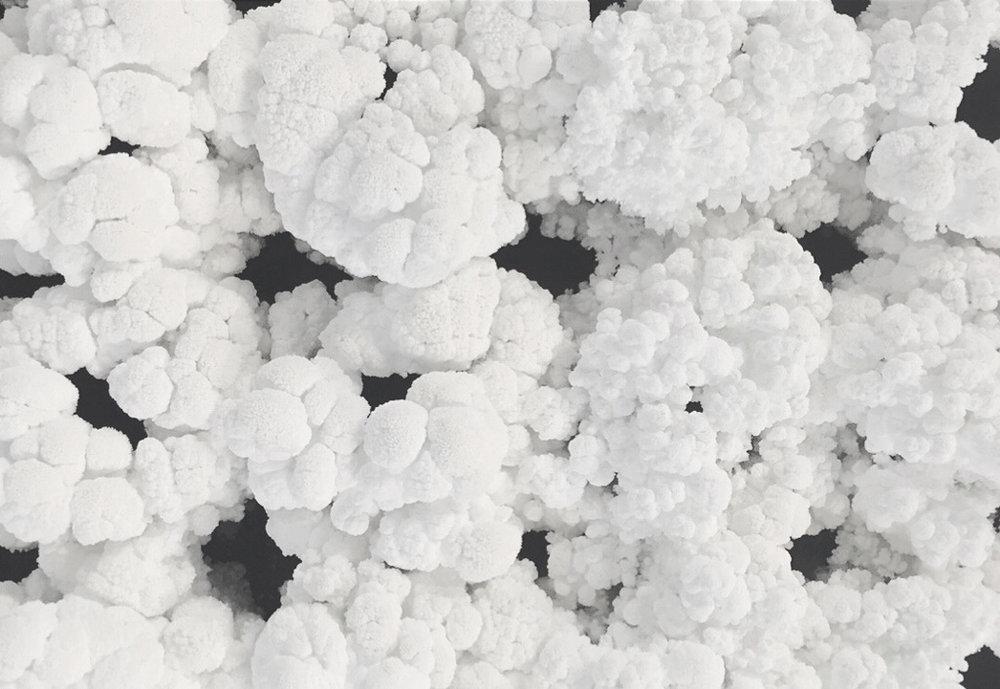 bd38cc9640fe89d5-coal_detail_2.jpg