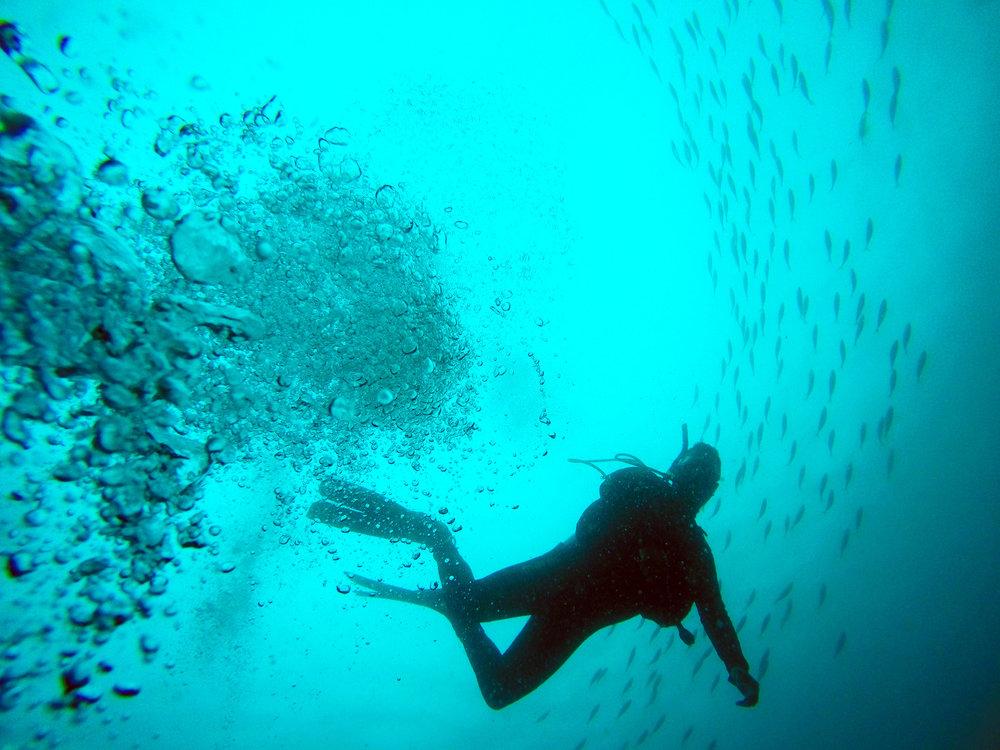 Boat Diving -