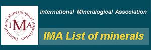 logo_IMA.jpg