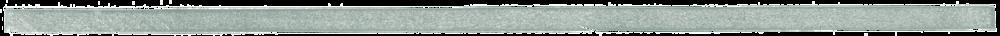 Horizontal_divider 01_green.png