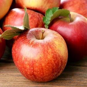 apple-square-300x300.jpg