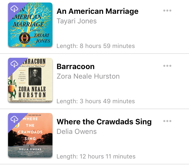 Libro FM audio books