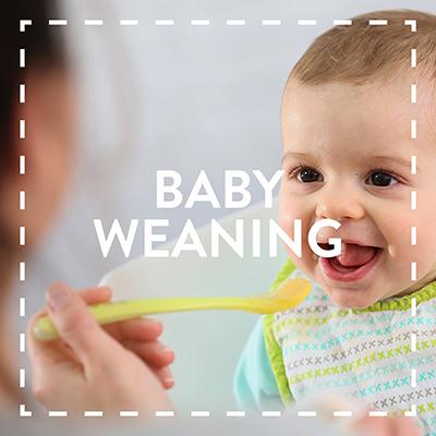 Bundle Baby Weaning.jpg