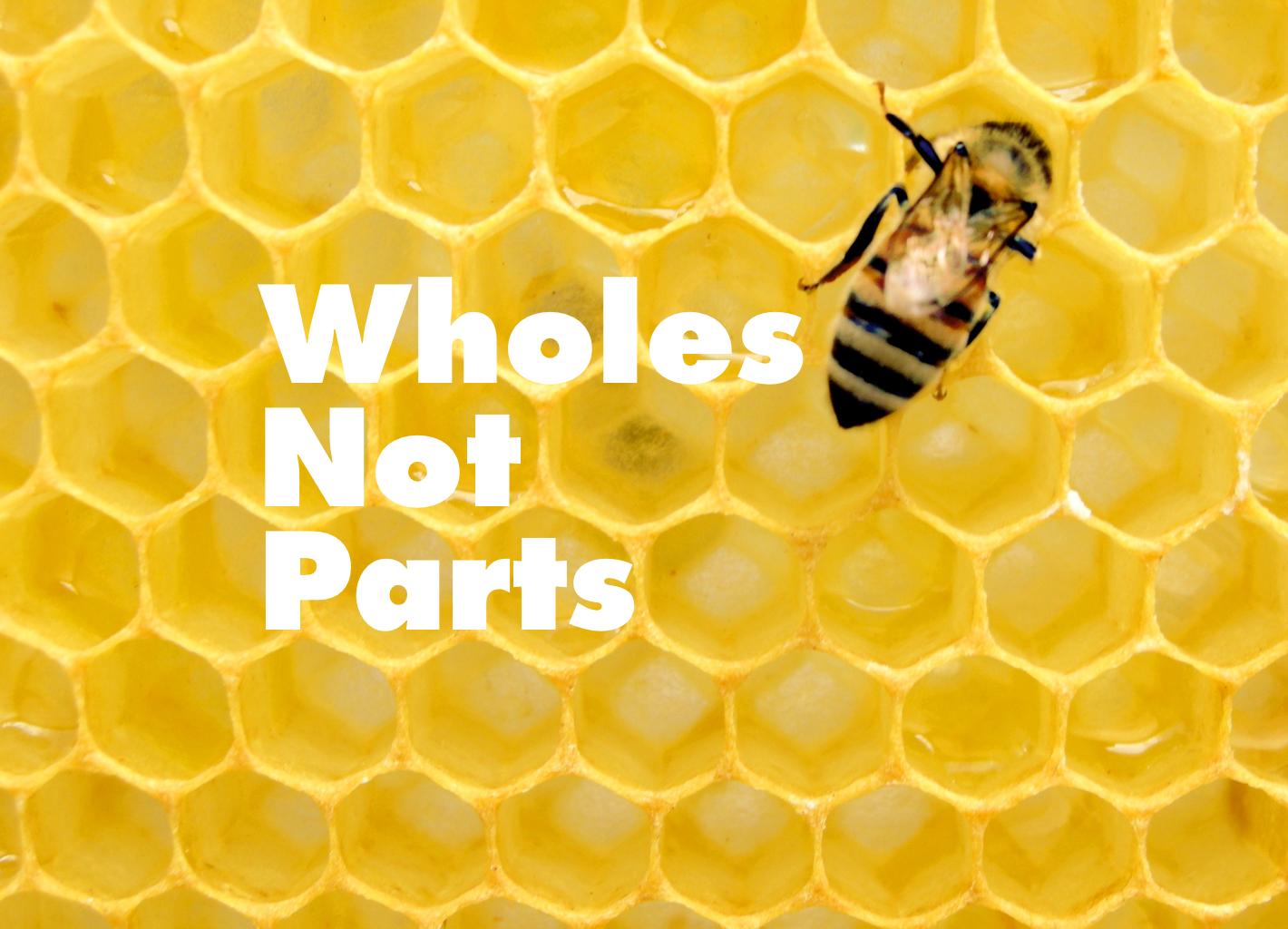 Wholes Not Parts