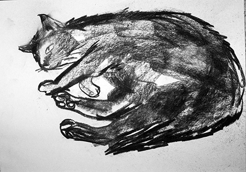 Charcoal cat drawing ©irenejuliawise