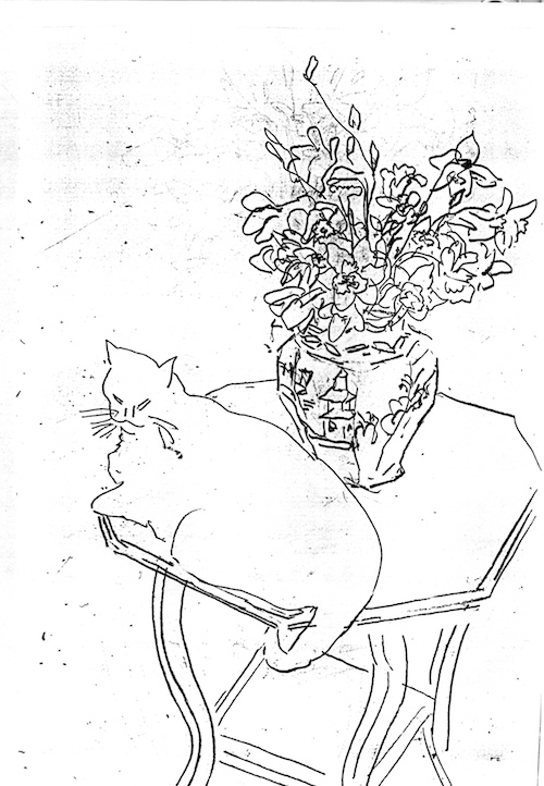 Cat and flowers (Line drawing) ©irenejuliawise