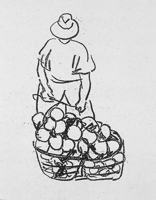 Global Development, Basket of Fruits ©irenejuliawise