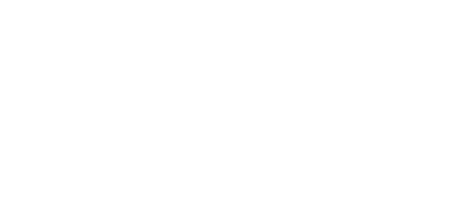 Amira Belly Dance - Belly Dancing Teacher and Blogger in Olympia & Seattle, Washington