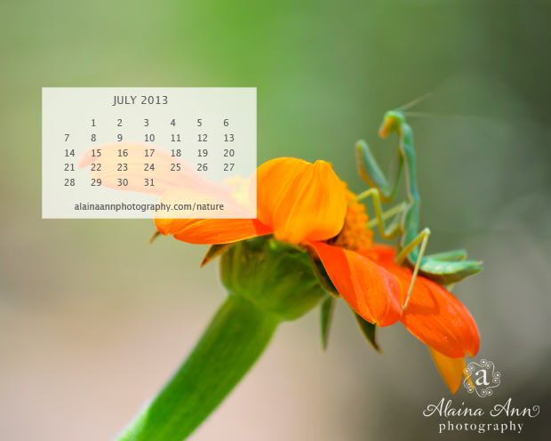 Alaina Ann Photography July 2013 Wallpaper Calendar