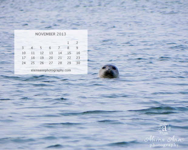 November 2013 Wallpaper Calendar | Alaina Ann Photography