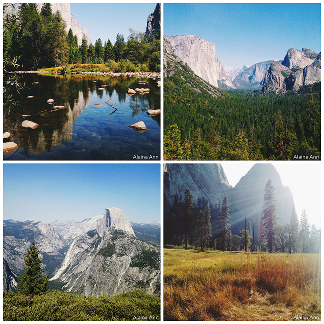 Yosemite National Park iPhone Favorites | Alaina Ann Photography