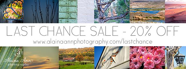 Alaina Ann Photography Last Chance Sale