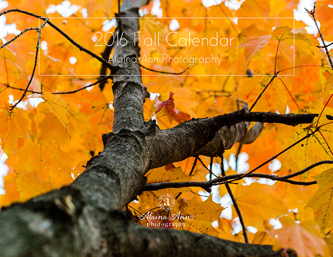 2016 Fall Calendar | Alaina Ann Photography