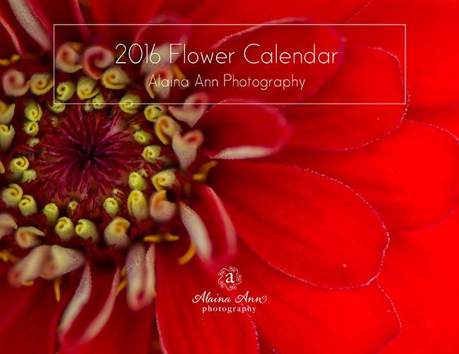 Inside the 2016 Flower Calendar | Alaina Ann Photography