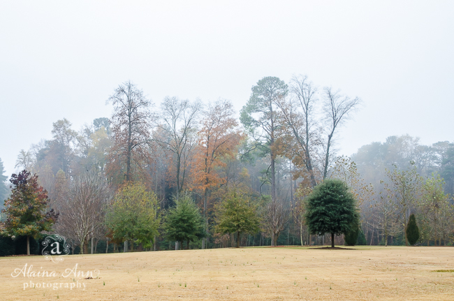 Pinehurst Fog | Alaina Ann Photography