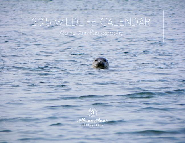 2015 Wildlife Calendar