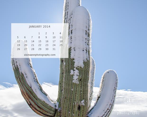 January 2014 Wallpaper Calendar | Alaina Ann Photography