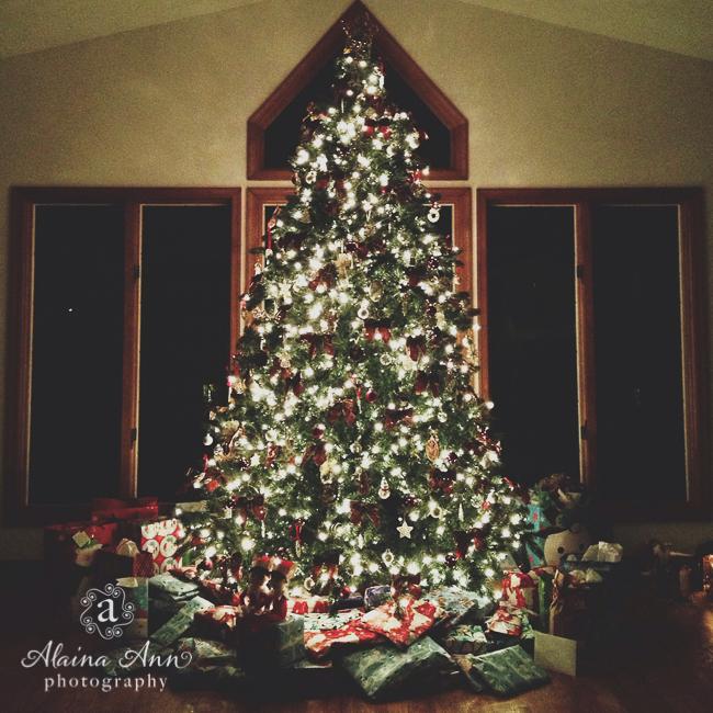 Christmas Tree | Alaina Ann Photography