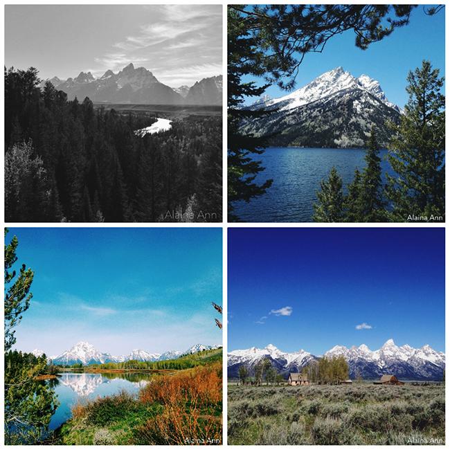Grand Teton National Park iPhone Favorites | Alaina Ann Photography