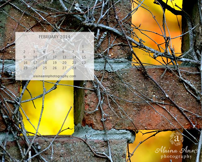 February 2014 Wallpaper Calendar | Alaina Ann Photography