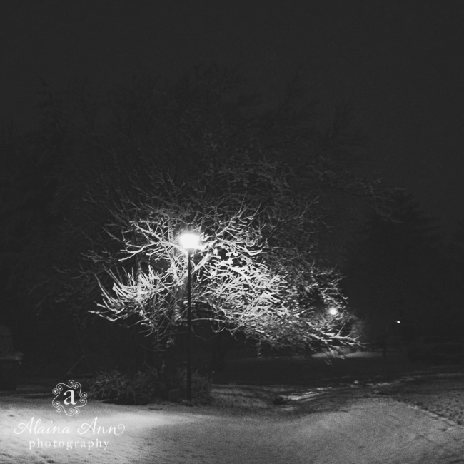 January Snow in Poolesville, Maryland | Alaina Ann Photography