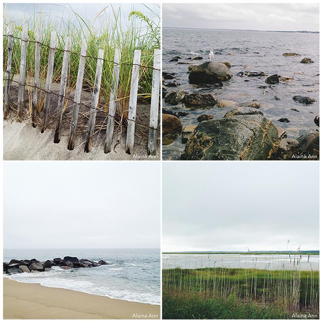 Plum Island iPhone Favorites | Alaina Ann Photography