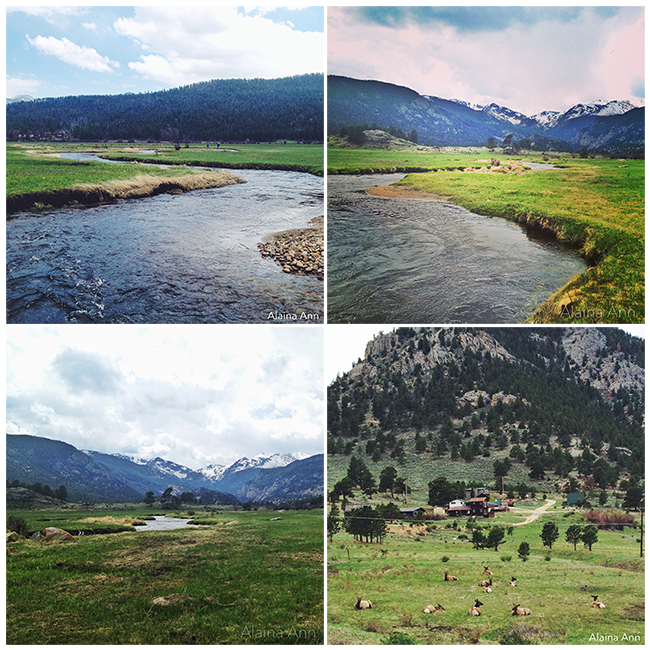 Rocky Mountain National Park | iPhone Favorites | Alaina Ann Photography