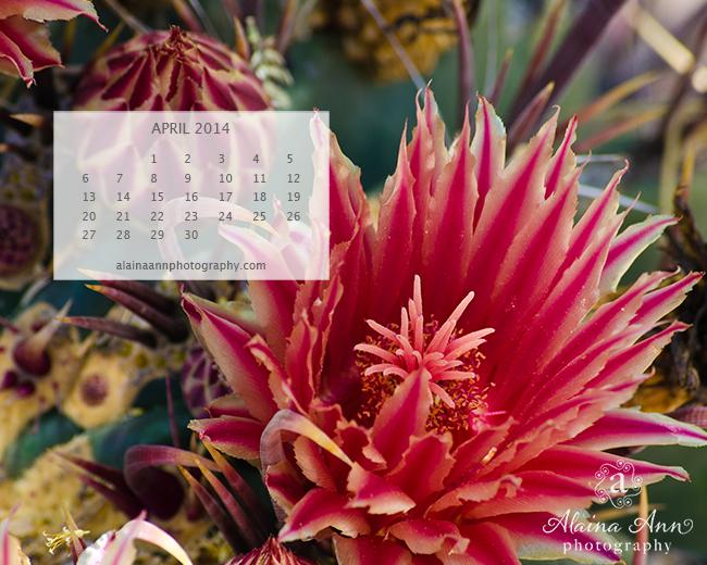 April 2014 Wallpaper Calendar   Alaina Ann Photography