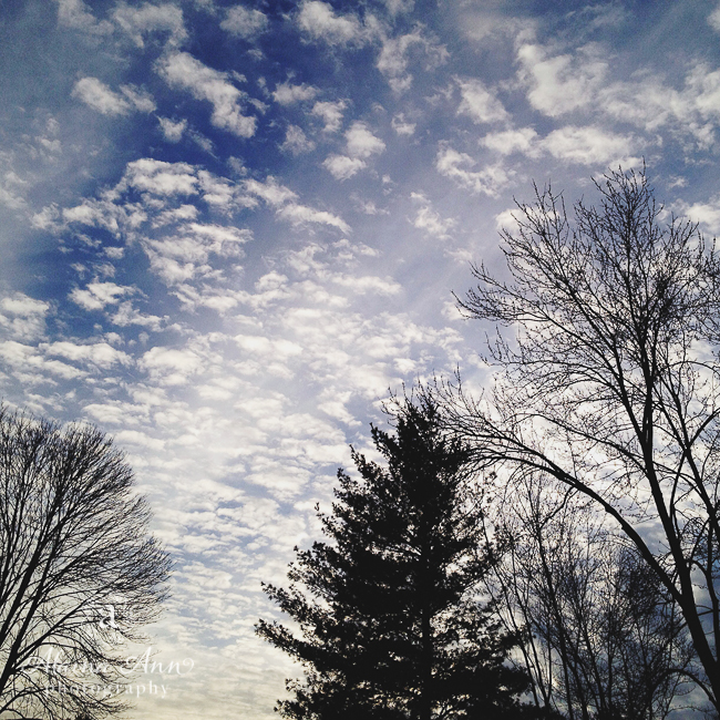 Blue Winter Skies | Friday Favorite | Alaina Ann Photography