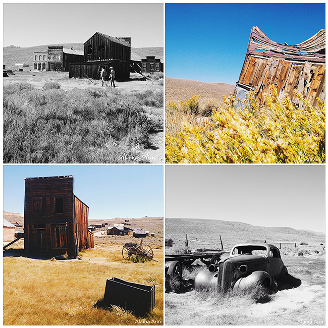Bodie State Historic Park | iPhone Favorites | Alaina Ann Photography