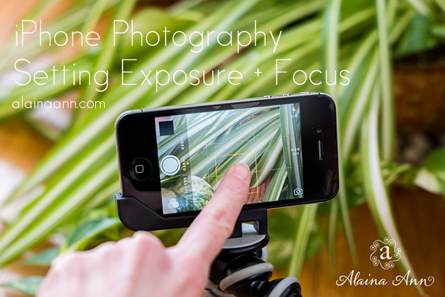 Setting Exposure and Focus | iPhone Photography | Alaina Ann Photography