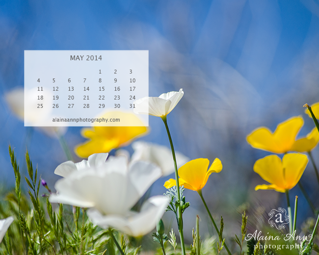 May 2014 Wallpaper Calendar | Alaina Ann Photography