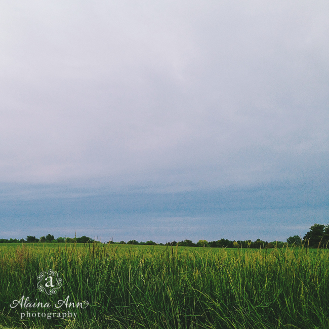 Poolesville Goodness | Friday Favorite | Alaina Ann Photography