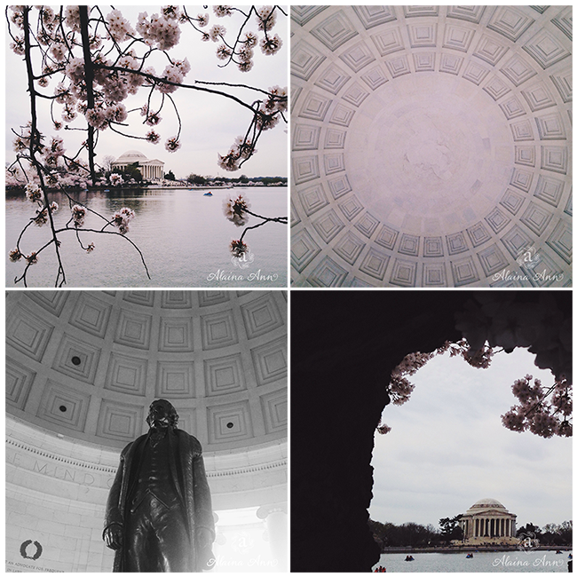 Thomas Jefferson Memorial | iPhone Favorites | Alaina Ann Photography