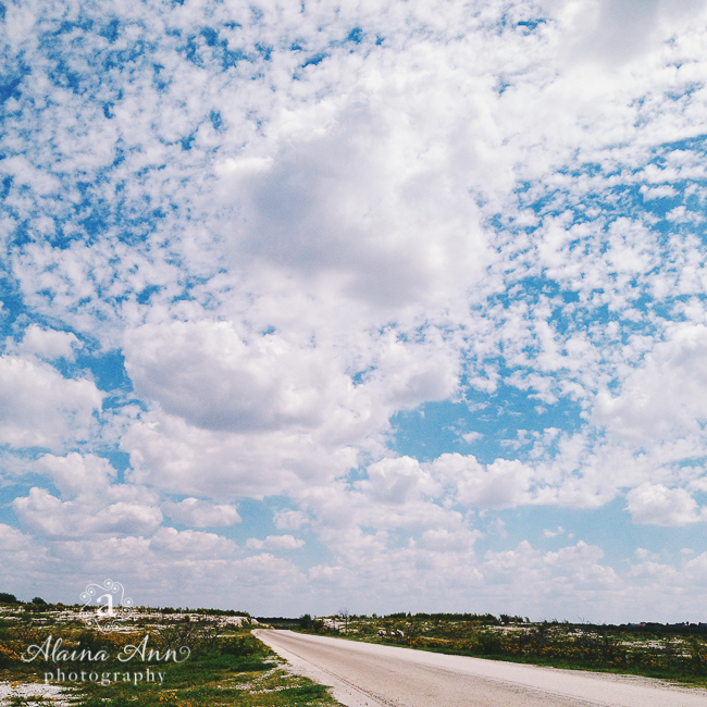 On the Road | Friday Favorite | Alaina Ann Photography