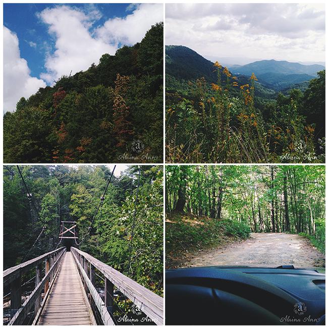 Nantahala and Chattahoochee National Forests   iPhone Favorites   Alaina Ann Photography