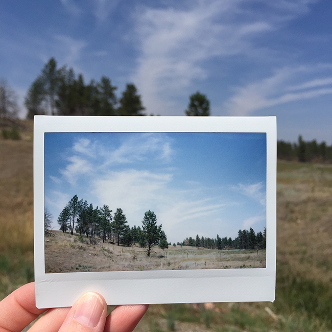 Custer National Forest | Alaina Ann Photography