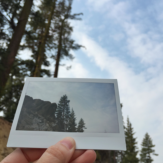 Lassen National Forest | Alaina Ann Photography