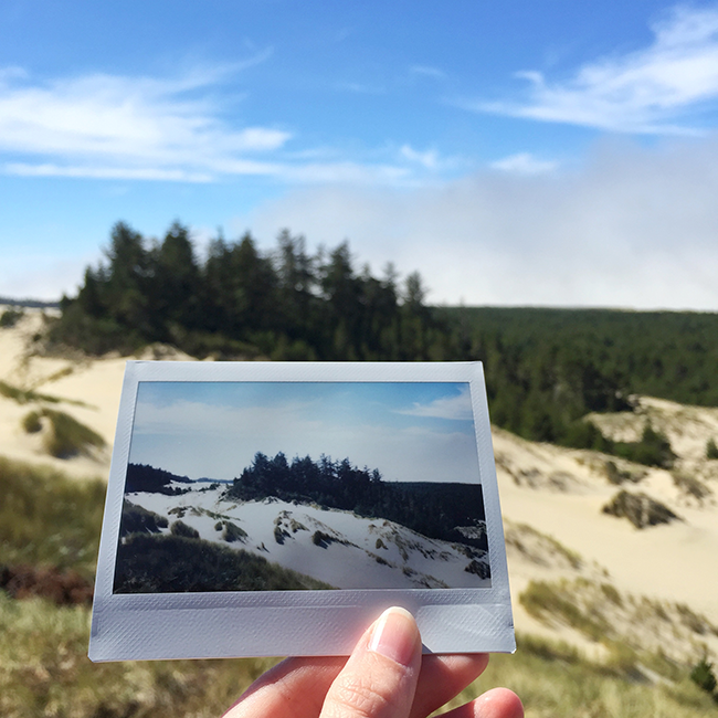 Oregon Dunes National Recreation Area | Alaina Ann Photography